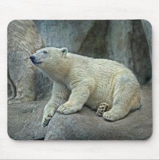Polar Bear Cub #1 Mouse Pad