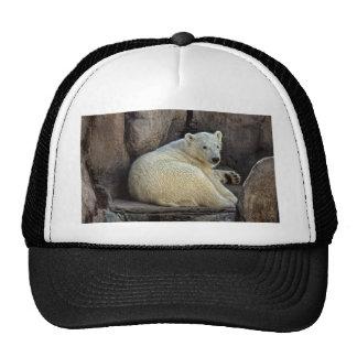 Polar Bear cub #2 Ball Cap Trucker Hat