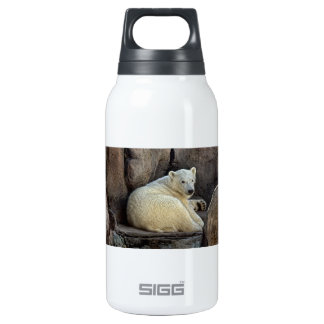 Polar Bear Cub #2 Insulated Water Bottle