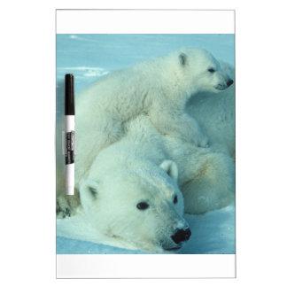 Polar bear cub and mom - 2 dry erase boards