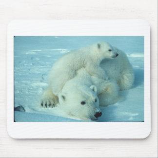 Polar bear cub and mom - 2 mouse pad