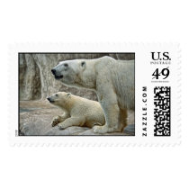 Polar Bear Cub and Mom Postage