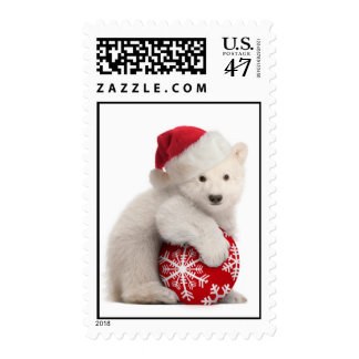 Polar Bear Cub Christmas Stamps