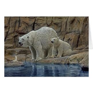 Polar Bear & Cub Holiday Card