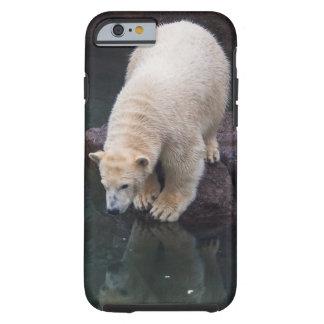 Polar Bear Cub iPhone 6 Case