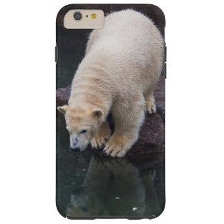 Polar Bear Cub iPhone 6 Plus Case