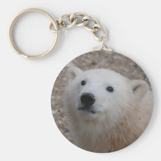 Polar Bear Cub Key Chain