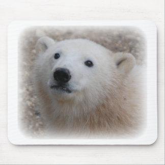 Polar Bear Cub Mouse Pad