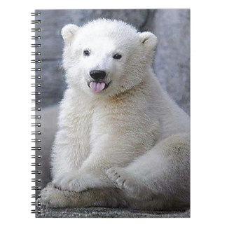 Polar Bear Cub Notebook