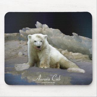 Polar Bear Cub on Ice & Aurora Mousepad
