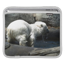 Polar Bear Cub Water-Baby Cute Animal iPad Sleeve