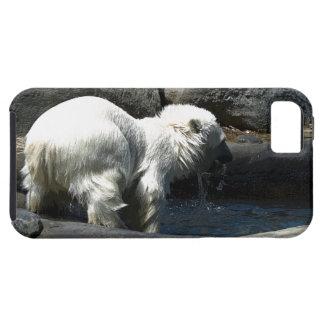 Polar Bear Cub Water-Baby Cute Animal iPhone Case iPhone 5 Covers