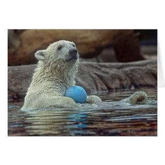 Polar Bear Cub with Toy card