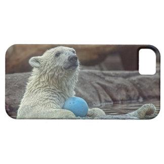 Polar Bear Cub with Toy iPhone 5 Cover