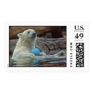 Polar Bear Cub with Toy Postage
