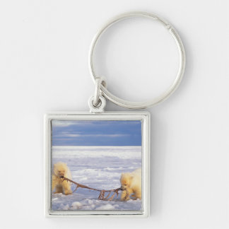 Polar bear cubs and meat on pack ice of frozen keychain