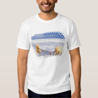 Polar bear cubs and meat on pack ice of frozen T-Shirt