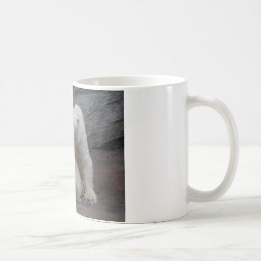 Polar Bear Cubs And Mother Coffee Mug