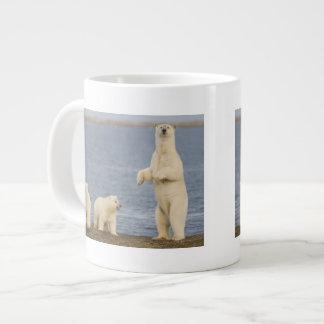 Polar bear cubs and their mother large coffee mug