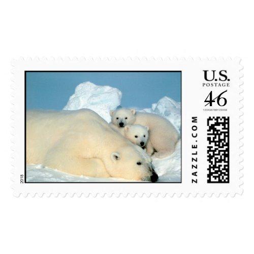 Polar Bear & Cubs by Steve Amstrup stamp