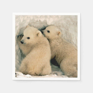 Polar Bear Cubs in the Snow Napkin