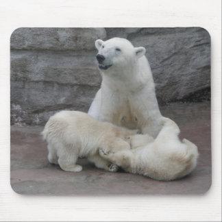 Polar bear cubs mousepads