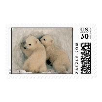 Polar Bear Cubs Postage