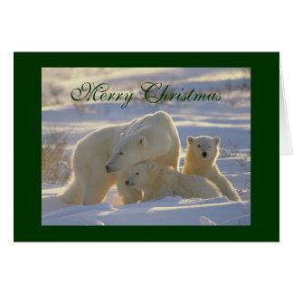 Polar bear & cute cubs in snow christmas card