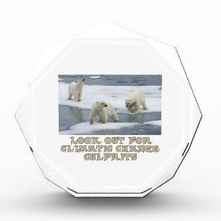 Polar bear designs acrylic award