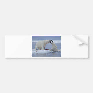 Polar Bear Duel Bumper Sticker