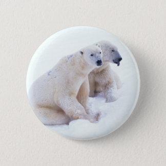 Polar Bear Duo Pinback Button