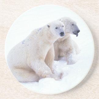 Polar Bear Duo Sandstone Coaster