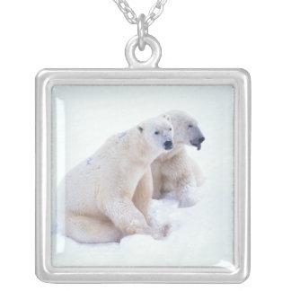 Polar Bear Duo Square Pendant Necklace