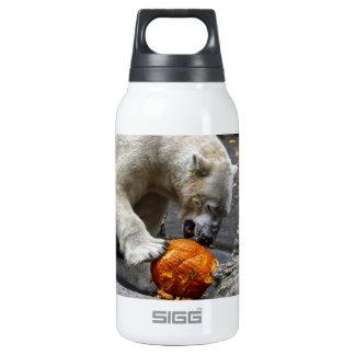 Polar Bear Eating a Pumpkin Thermos Water Bottle