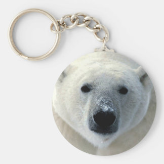 Polar Bear Face Basic Round Button Keychain