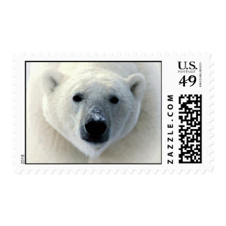 Polar Bear Face Postage
