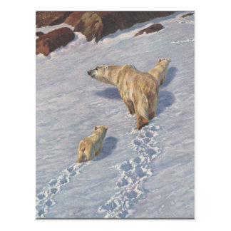Polar bear family by Richard Friese Postcard