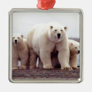 Polar Bear Family Metal Ornament