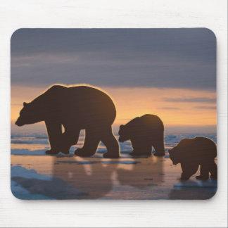 Polar Bear family Mouse Pads