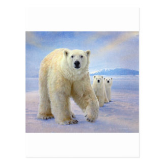 polar bear family on ice postcard