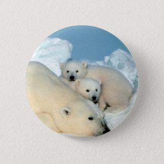 Polar Bear Family Pinback Button