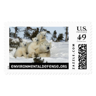 Polar Bear Family Postage Stamp