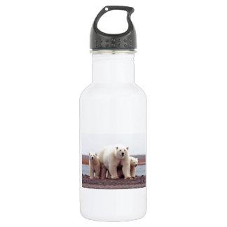 Polar Bear Family Stainless Steel Water Bottle
