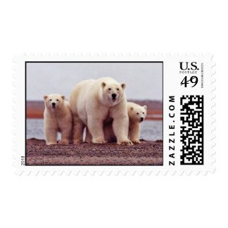 Polar Bear Female with Young Postage Stamp