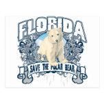 Polar Bear Florida Post Cards