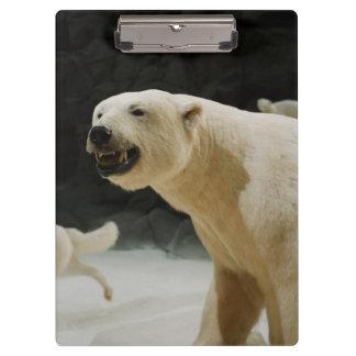 Polar Bear Grin Clipboard