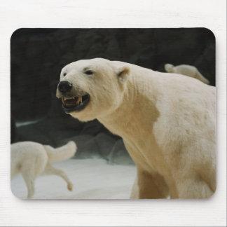 Polar Bear Grin Mouse Pad