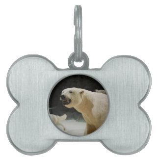 Polar Bear Grin Pet Name Tag