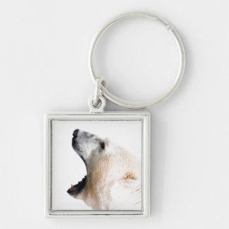 Polar bear growl Silver-Colored square keychain