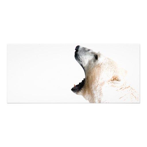 Polar bear growl rack card